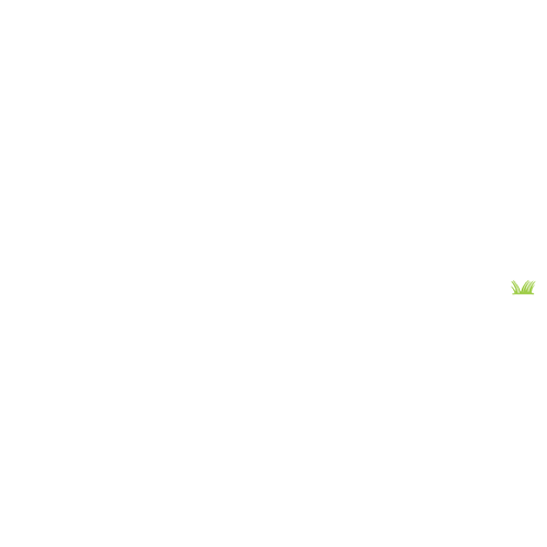Naperville Patch