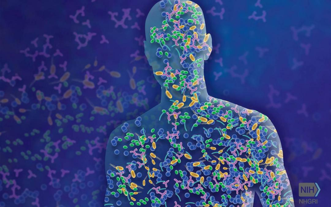 Thousands of New Microbes Found Living in the Human Gut